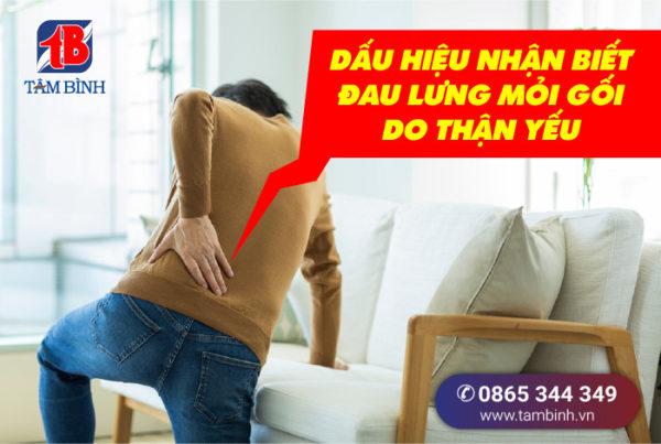 dấu hiệu đau lưng mỏi gối do thận yếu