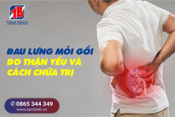 đau lưng mỏi gối do thận yếu và cách chữa trị