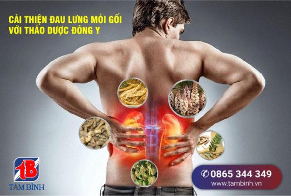 điều trị đau lưng mỏi gối do thận yếu